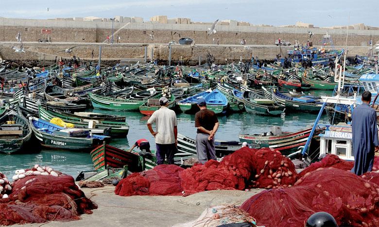 ارتفاع قيمة منتجات الصيد الساحلي والتقليدي المسوقة بميناء آسفي