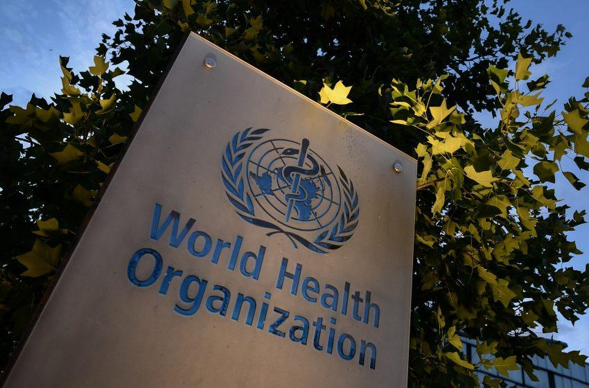منظمة الصحة العالمية تشكل مجموعة استشارية جديدة لتحديد منشأ الجوائح